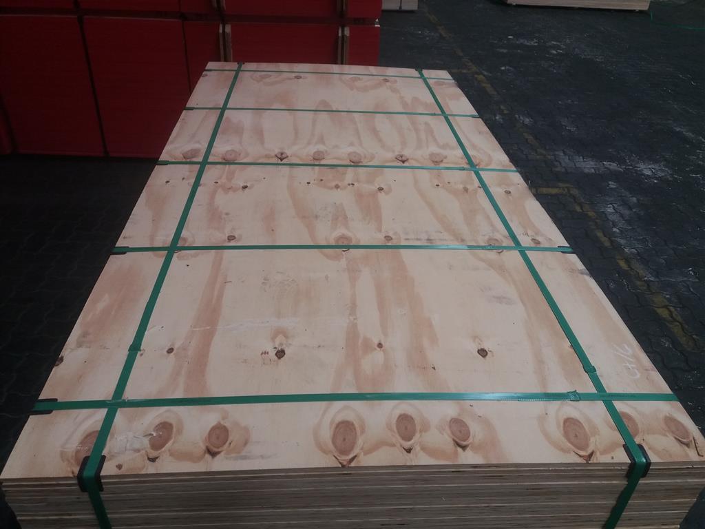 Pine plywood CDX