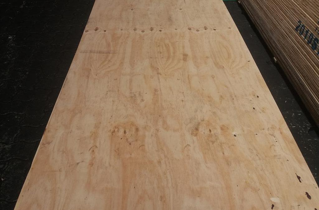 Pine plywood C+/C